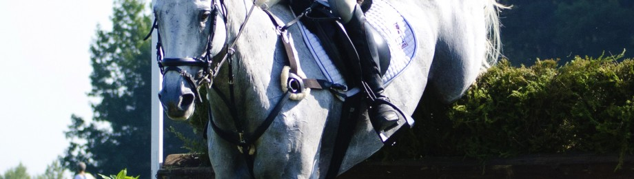 eventing 8